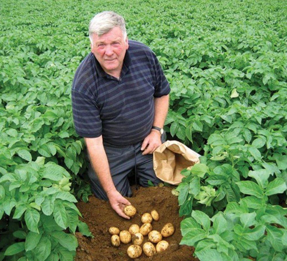 Glens of Antrim Potatoes Ltd.